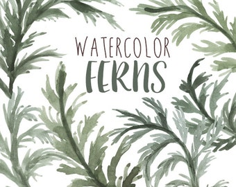 Watercolor Ferns Clip Art, Fern Clipart, Natural Images, Greenery Watercolor Artwork, Green Tree Clip Art, Leaves, Ferns, Outdoors Clipart