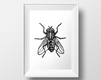 Fly Print / INSTANT DOWNLOAD / Insect Printable Art / Minimalist Decor Housefly Print / Bug Print / House Fly Print / Black and White Print