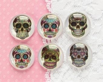 6 Pcs Glass Dome Skull Cabochons - 20mm