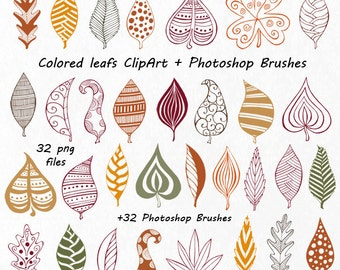 Hand Drawn Doodle Leaves Clipart, autumn leafs, PNG, Photoshop Brushes, Digital clipart, Foliage Clip art, for Personal and Commercial Use