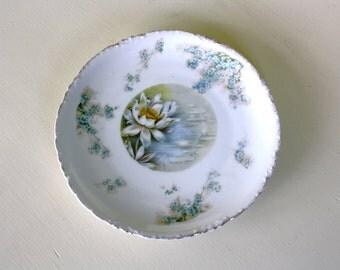 Antique Waterlily Decorative Plate Rosenthale Bavaria Fine China Plate