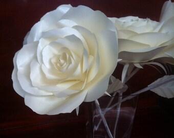 Dozen of Paper Roses