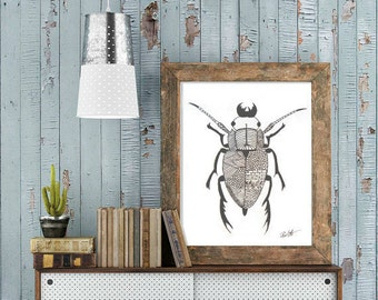 Original Art, BUG, Ink and Pencil Drawing, fine Art, Ink Drawing
