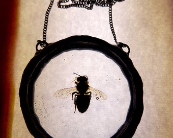 Real bee necklace.Dead real bee(fly) preserved in resin.3D.Handmade,transparent pendant in round shape.Dead bee caught in resin.Big pendant.