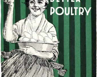 Urban Farming poster, More Eggs and Better Poultry, Organic, Sustainable, Healthy