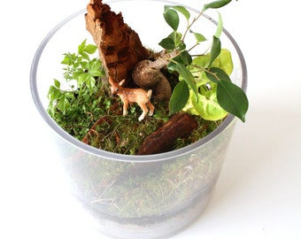 Woodland Terrarium with Deer Fawn