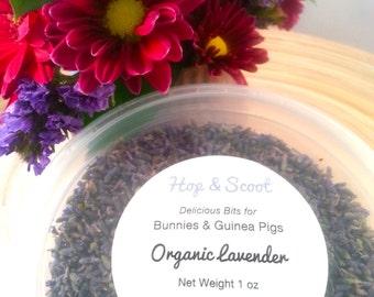 Organic Lavender (1 oz) for Bunnies & Guinea Pigs
