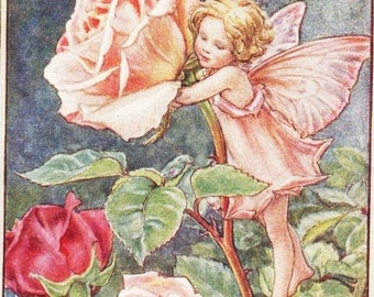 Flower Fairies: THE ROSE FAIRY Vintage Print c1930 by Cicely Mary Barker