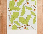 Leaf and Acorn Art Print,...