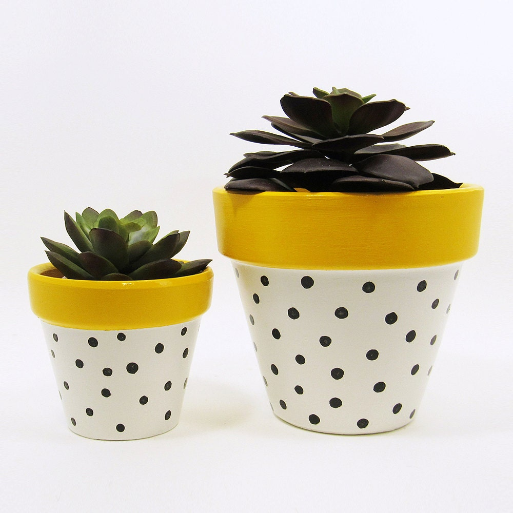 Succulent Planter Terracotta Pot Polka Dot Planter Cute