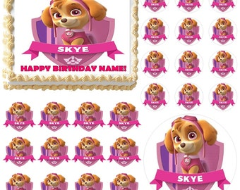 PAW PATROL SKYE Edible Cake Topper Image Frosting Sheet Cake Decoration Many Sizes!