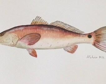 Watercolor Red Fish
