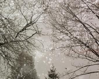 Snow Scene Digital Download--Large File