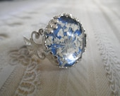 Queen Anne's LaceVictorian Filigree Crown Pressed Flower Ring Under Glass Atop True Blue-Symbolizes Peace-Nature's Art-Gifts Under 20