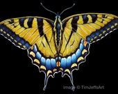 Swallowtail Butterfly Colored Pencil Drawing. *Signed by Artist*