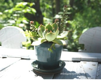 Succulent Planter~Ceramics and Pottery~Blue Green Planter with Drainage~Home and Garden~Vintage Garden~ READY TO SHIP!!!