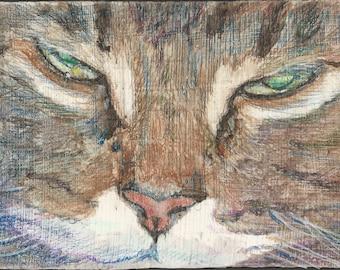 Cat Block #3