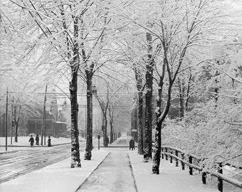Winter Street Scene, 1910. Vintage Photo Digital Download. Black & White Photograph. Winter, Snow, Storm, Nature, 1910s, Historical.