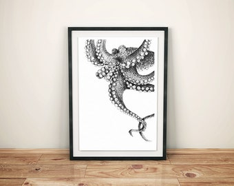 Hand-drawn illustrated Octopus print. Octopus print. Sea creatures. Octopus illustration. Cephalopod. Nautical drawing. Vintage octopus