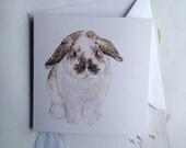 Illustrated Bunny Rabbit Greeting Card