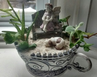 Miniature Fairy Garden Kit w/ Succulent Cuttings, Teacup Container Planter, Puppy Dog, white picket fence