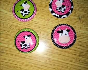 Cow magnets