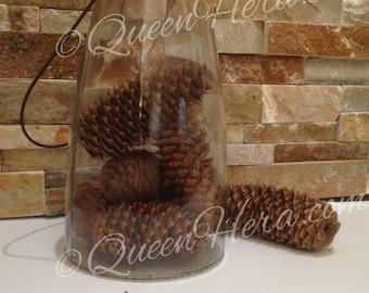 10 Norway Spruce Pinecones Primitive Rustic Bowl Filler Crafts Wedding Decor Farmhouse Centerpiece