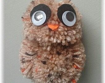 OLLIE OWL