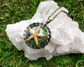 Starfish Terrarium Necklace