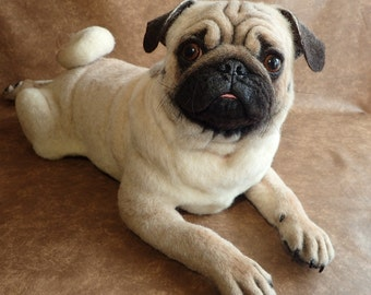 SOLD. Realistic Pug .Boy. Life-size Handmade Needle Felted Wool Animal Sculpture