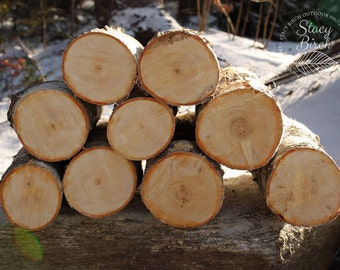White Birch Logs - SHIPPING INCLUDED