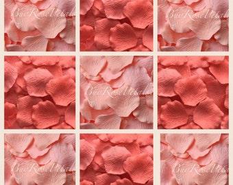 Coral Sorbet -Apricot Blend Rose Petals - Silk Rose Petals for Weddings