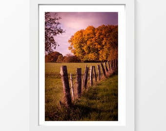 "Autumn feel / Meadow field trees fence barbed wire photo printable wall art home decor downloadable art to print yourself / A3 and 11"" x 17"""