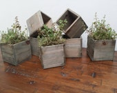 Reclaimed Wooden Planter Boxes - Rustic Wooden Pots - Indoor Gardening - Rustic Home Decor - Plants