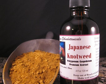 JAPANESE KNOTWEED Extract / Tincture 4 oz dropper bottle