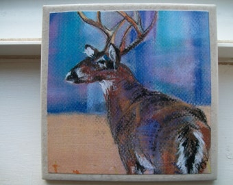 Deer (White Tail) NoZoo Art Tile