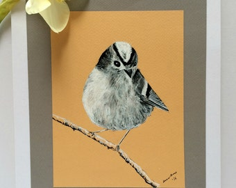 Goldcrest, Original Ink Drawing, Bird Art