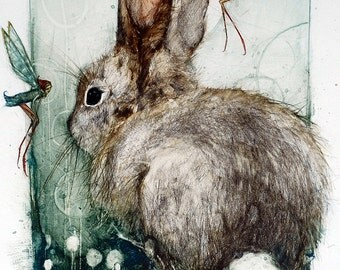 Forest Dwellers Rabbit