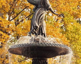 Angel of the Waters - Bethesda Fountain in autumn Central Park NYC