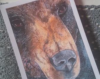 The bear 5x7  art print.