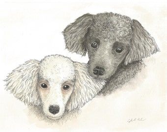 Pet portrait, hand drawn pen and ink with watercolor, done from your photos