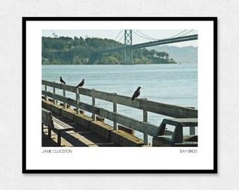 California Photography, San Francisco Art Print, 8x10 | Bay Birds