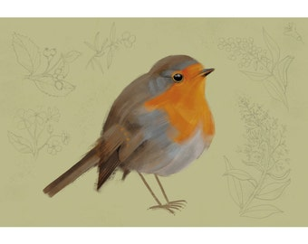 A4 Art Print, Red Robin, 300 g Munken polar
