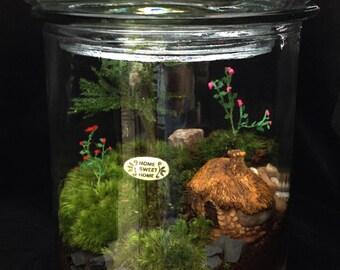 Moss Terrarium-Home Sweet Home-Housewarming Terrarium-TerraSphere