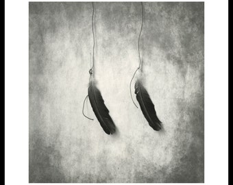Two feathers. Darkroom silver print on fiber based paper