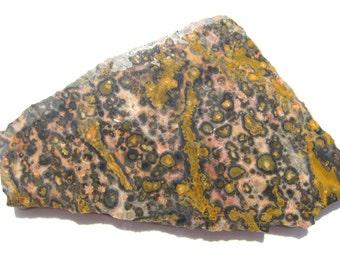Leopard Skin Jasper rough slab Orbicular jasper Jaguar Stone rough slab Leopard skin jewelry