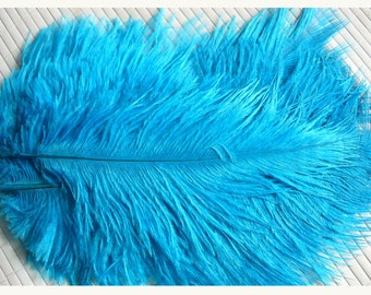 1 feather for various confections * feathers F 111