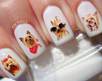 50 Yorkshire Terrier Nail Decals