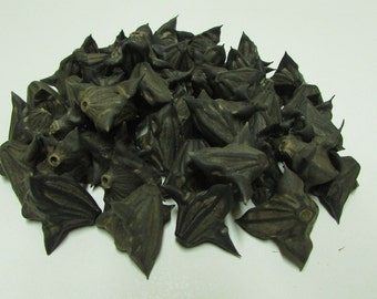 Rare Spiny and Hard Pods River, Set of 50 Natural Pods, Amulet Pod, Crafting Pods, Talisman Water Devil,  Ward From Evil,Gothic Pods, Decor