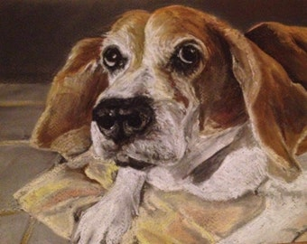 Custom hand drawn pet portrait A4
